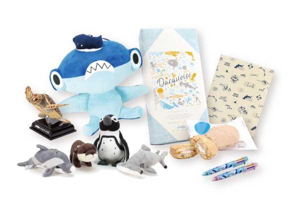 「四国水族館」のお土産・おすすめ6選(お菓子・ぬいぐるみ・キーホルダー!)
